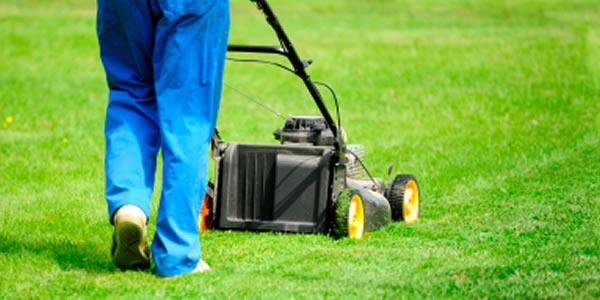 seasonal grounds maintenance wirral